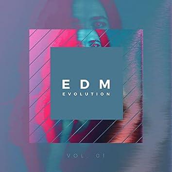 EDM Evolution - Vol. 01