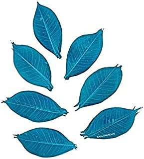 NAVA CHIANGMAI Rubber Tree Leaves - Pack of 100 Skeleton Leaves Decorative DIY Craft, Artificial Leaves Craft Card Scrapbo...