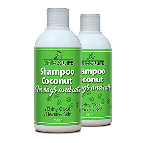 Champú de Aceite de Coco para Perros & Gatos 500ml - Árbol de Té Etéreo & Aceite de Romero - Nutriente - Fácil de Peinar - Olor Agradable