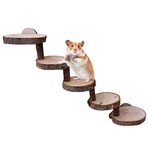 Hamsterleiter Brücke Holz Käfig Spielzeug Dekor für Kleintierbehausungen Weidenbrücke,Hamster Leiter Holz Vogelspielzeuge für Käfig Holzrampe Leiter Treppe Brücke,Natural Living Leiter (5. Etage)