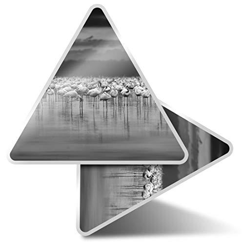 2 pegatinas triangulares de 7,5 cm – BW – Flamingo Birds Tropical Flock Fun Calcomanías para ordenadores portátiles, tabletas, equipaje, reserva de chatarra, neveras #42877