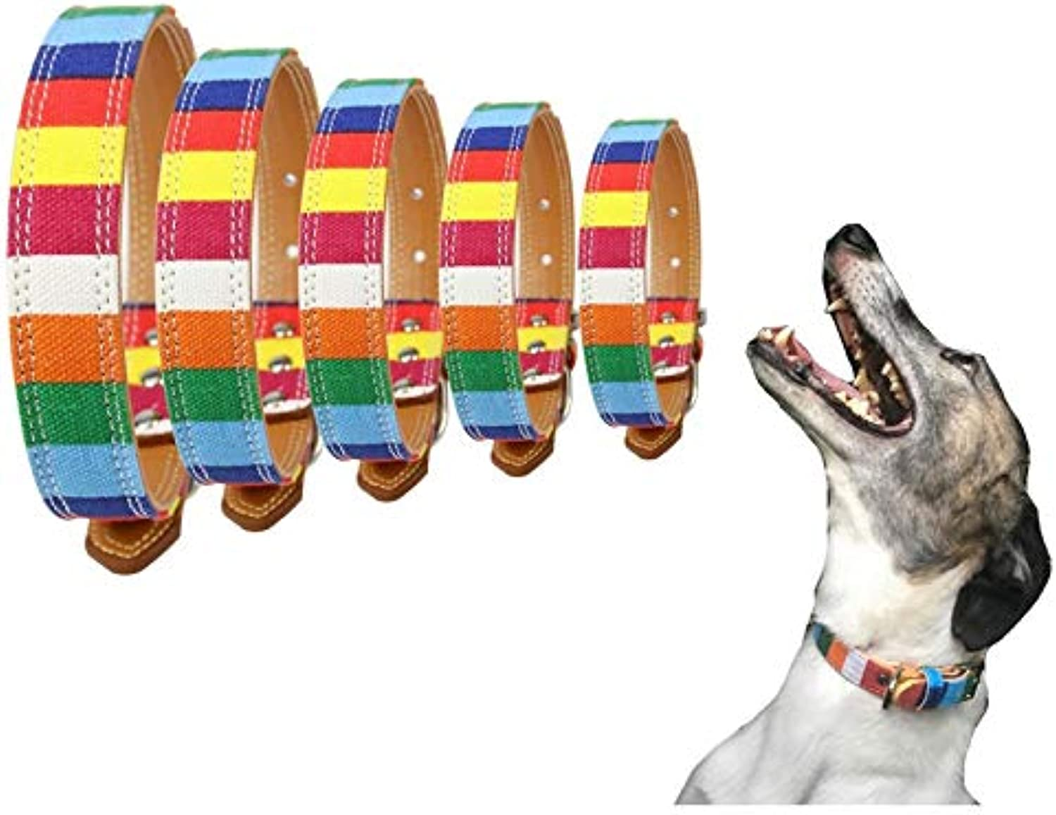 Lushpetz Rainbow Canvas Dog Collar for XSmall, Small, Medium, Large and XL Dogs (Large Length of Collar 23.6 )