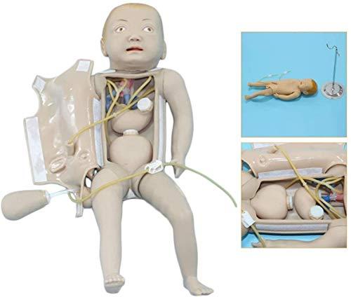 Schneiderpuppe Weiblich verstellbar Baby Intubation Manikin Study Teaching Baby Pflegemodell Ausbildung Krankenschwester Lab Airway Management Trainer Intubation Manikin schneiderbüste ständer