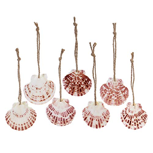 Sea Team 24-Pack Natural Seashell Christmas Ornaments, Decorative Hanging Shell Ornaments, Nautical Christmas Tree Decorations, Marine Style Pendants, 2-3 Inches, Hemp Rope Included (Colorful)
