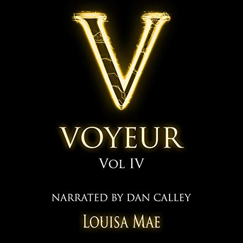 Voyeur Vol IV cover art