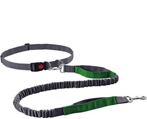 KINAMADE Retractable Hands Free Dog Leash for Running Walking Training Hiking, Dual-Handle, Reflective, Adjustable Waist Belt, Shock Absorbing, Ideal for Small Medium Dog (Green/Grey)