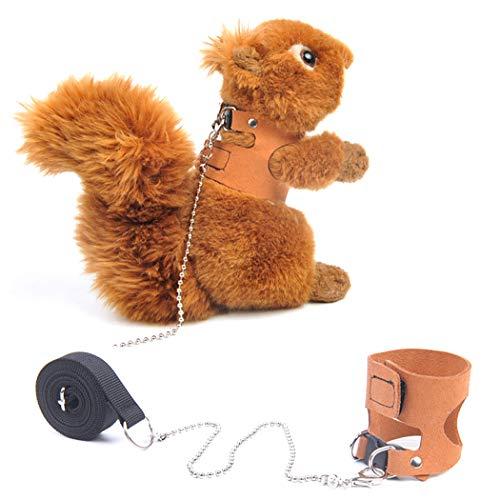 Dorakitten Squirrel Leash and Harness Set Creative Adjustable Fashion Small Animal Harness Small Animal Harness and Leash