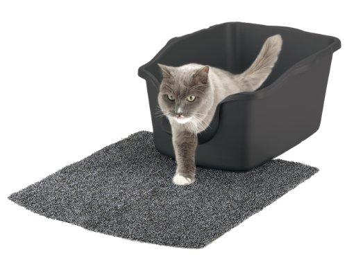 best litter box for elderly cat
