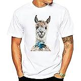 Camiseta Hombre Holgada Transpirable Animal Estampado Hombre Shirt Verano Cuello Redondo Ajuste Regular Moderna Tendencia Manga Corta Urbanas Cómodo Hombre Casuales Camisa B-DW2 XL
