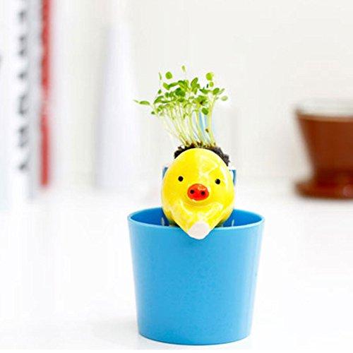 Cute Fashion Indoor Accueil Jardin Bureau Self Arrosage Flowerpot Pot Magique animal Avec Paille # 81525
