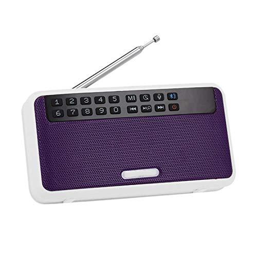 Lsmaa Radio portátil, Mini FM Reproductor de música con Pantalla LCD Linterna Manos Libres con función de Apoyo Llamada Selfie, Muy Adecuado for el Uso Diario y el Uso de Viaje (Color : Purple)