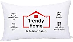 powerful Trendy Home 12×18 Hypoallergenic Filler Home Office Decorative cushions, cars …