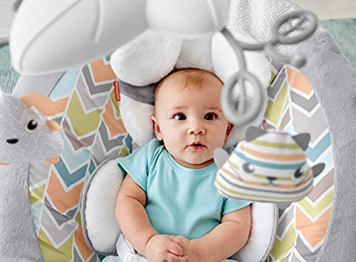 Fisher-Price Sweet Snugapuppy Deluxe Bouncer, Portable Bouncing Baby Seat with Overhead Mobile, Music and Calming Vibrations, White