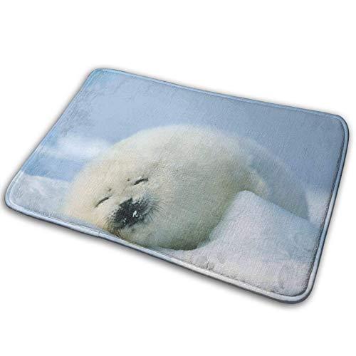Alfombra de baño con sello polar para dormir, para sala de estar, dormitorio, sofá, puerta, cocina, alfombra de baño, para decoración del hogar, 39,7 x 59,7 cm
