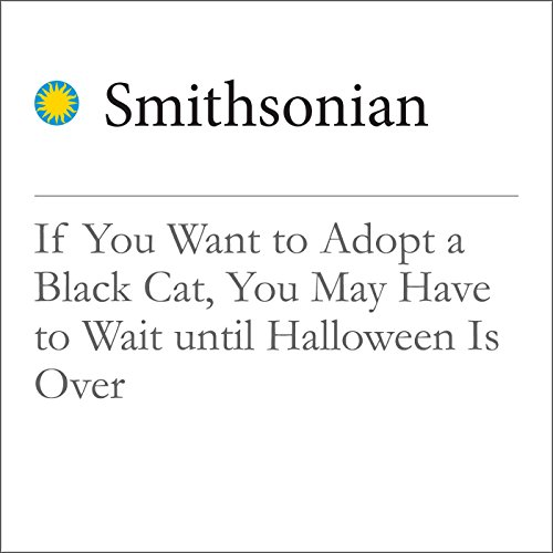 If You Want to Adopt a Black Cat, You May Have to Wait Until Halloween Is Over cover art
