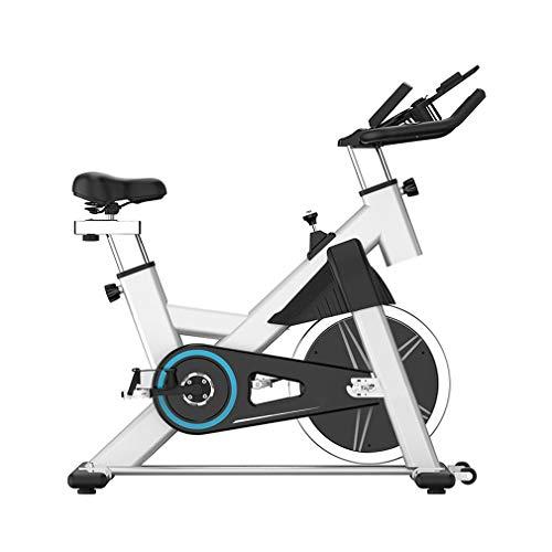 DQY Bicicletas EstáTicas, Bicicleta Vertical, Bicicleta Fitness Ultra Silenciosa con Monitor LCD, Bicicleta Ciclismo Interior con TransmisióN por Correa para Entrenamiento Casa,Blanco