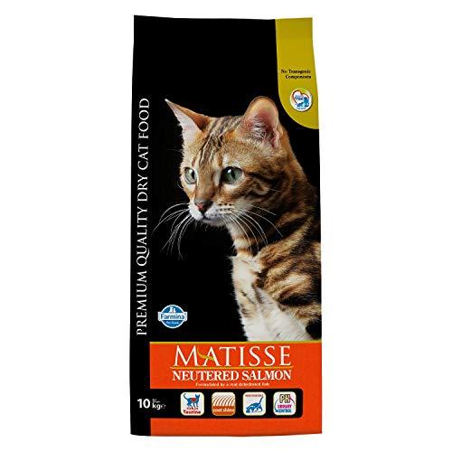 crocchette per gatti farmina matisse 10 kg migliore guida acquisto