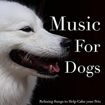 Music For Dogs - Relaxing Songs to Help Calm your Pets