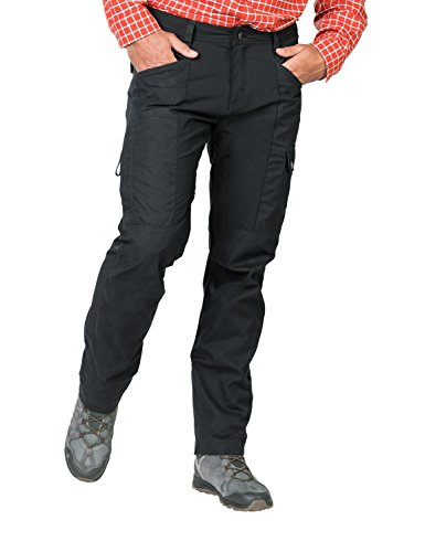 Jack Wolfskin Dawson Flex Pantalon de Voyage pour Homme 54 Gris (Phantom).