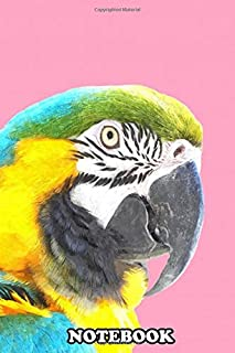 """Notebook: Macaw Portrait Pink Background Colorful Tropical Anim , Journal for Writing, College Ruled Size 6"""" x 9"""", 110 Pages"""