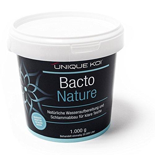 SunSun Unique Koi Bacto Nature 1000 g für 20000 L Teichwasser Biostarter Filterbakterien