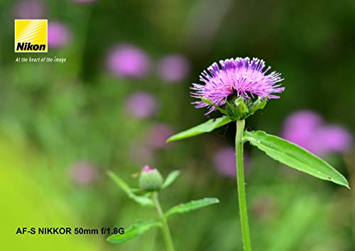 Nikon(ニコン)『AF-SNIKKOR50mmf/1.8G』