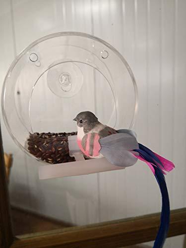 Ertisa Mangiatoia per uccelli da finestra, in acrilico trasparente con fissaggio a ventosa e catena appesa, mangiatoia per uccelli con supporto per mangiatoia trasparente da appendere