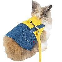 ICOUCHI ウサギ 子猫 ハーネス リード セット 可愛い うさぎ服 モルモット 子犬 小動物用 調整可能 着ぐるみ お散歩用リード お出かけ用品 矮小ウサギに最適 ペット用品 (S, イエロー)