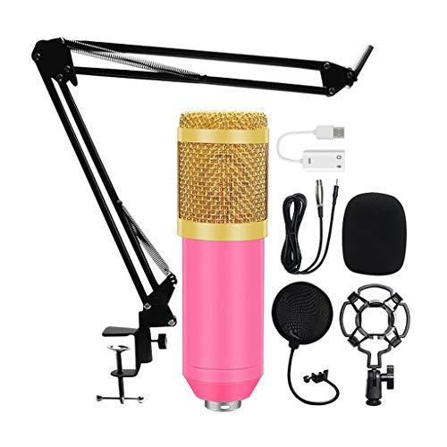WYJBD Karchone Kits Kits Professional Condenser Micrófono Bundle Pop Filter Mikrofon para computadora portátil Estudio Grabación