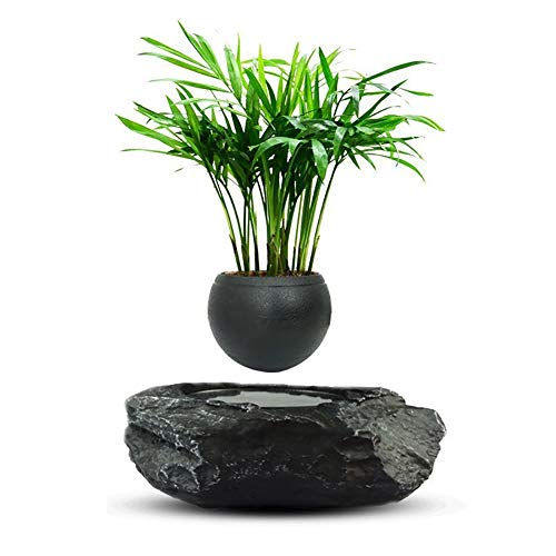 Vaso per bonsai fluttuante – Vaso per fiori con sospensione...