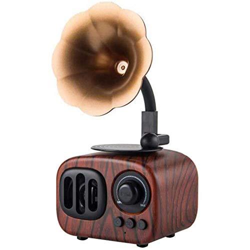 POOPFIY Altavoces Bluetooth inalámbricos portátiles Tamaño de la Palma, con diseño Retro de gramófono de Radio FM, batería Recargable incorporada