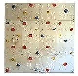 GARTENPIRAT Parete da Arrampicata per Uso Interno IW8 - 240 x 240 cm con 40 Pietre