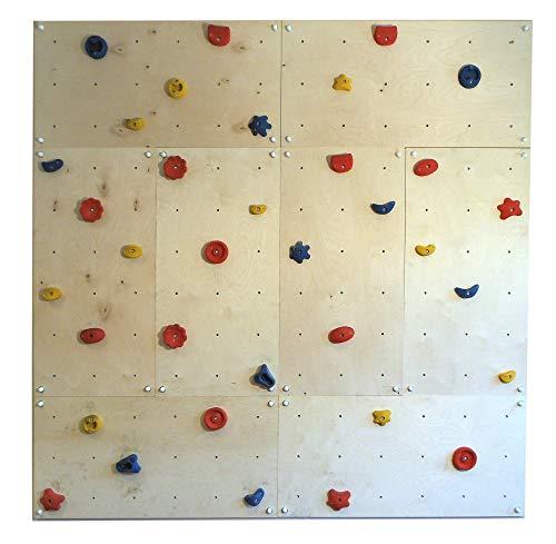 Gartenpirat Indoor Kletterwand IW8 240 x 240 cm mit 40 Klettersteinen