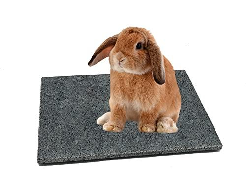 DiConcetto Kratzstein/Pflegestein sowie Kühlplatte/Klimastein aus Granit für Hamster, Meerschweinchen, Hasen und weitere Nager (Dunkel 30 x 20 cm)