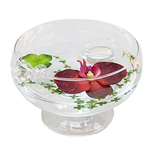 Ronde verre-bol roxy 75 hauteur : 11 cm diamètre : 17 cm-plat en verre sur pied avec décoration orchidée rouge casablance design coupelle de glaskönig