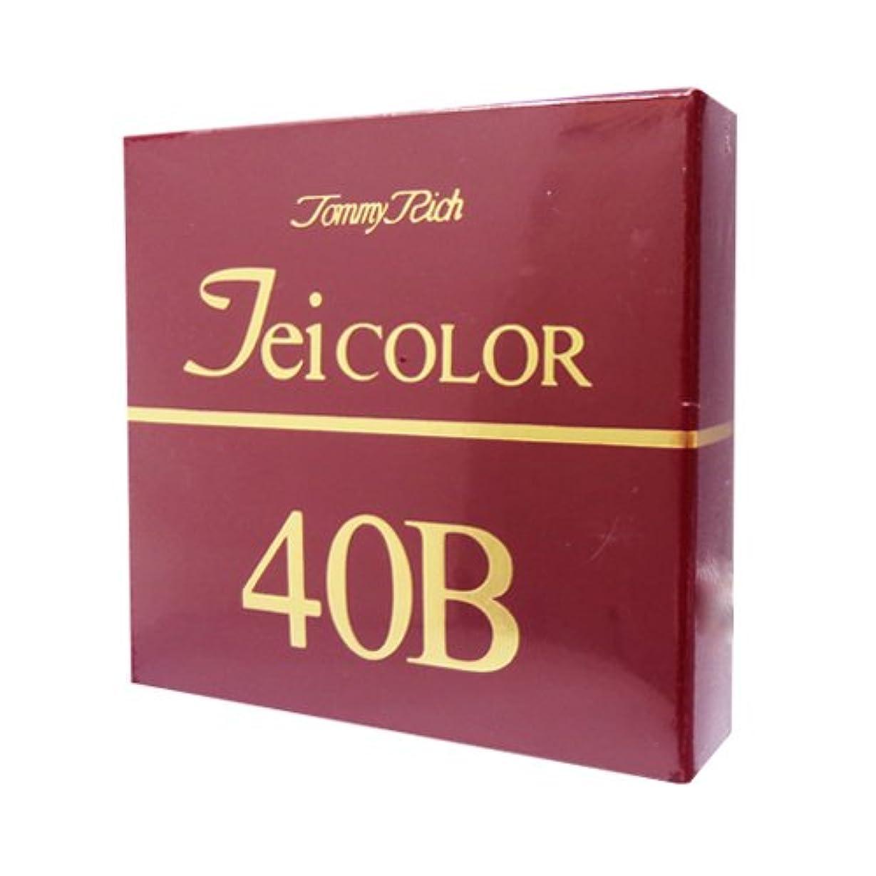 パターン増強するハミングバードトミーリッチ TEIカラー 40B(色白肌用)