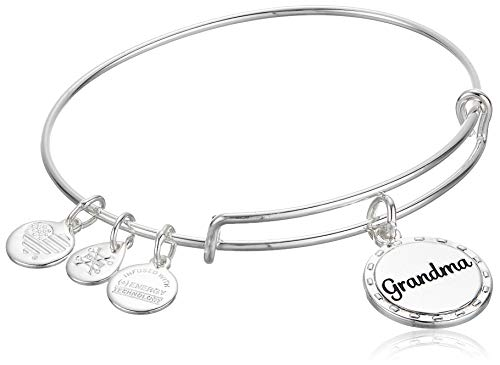 Alex and Ani Because I Love You Grandma IV EWB, SAS, Shiny Antique Silver, Expandable (A20BILY06SAS)