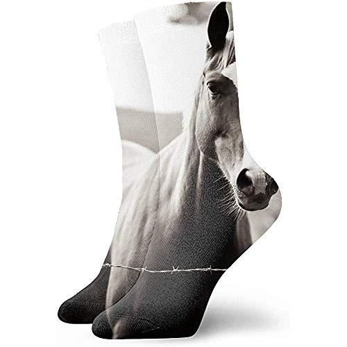 chongha Unisex hond puppy Belgische herder huisdier baby sokken Crazy tube grappige nieuwigheid polyestervezel sokken