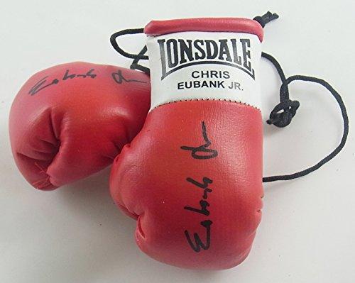 Everlast Timothy Bradley Signiert Mini Boxhandschuhe