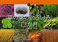草の葉のいろいろ12か月 (生きものカレンダー)
