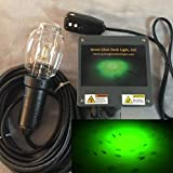 21,000 Lumens, Saltwater Green Underwater Fish Light Kit w/50' Lamp Cord, Dock Light