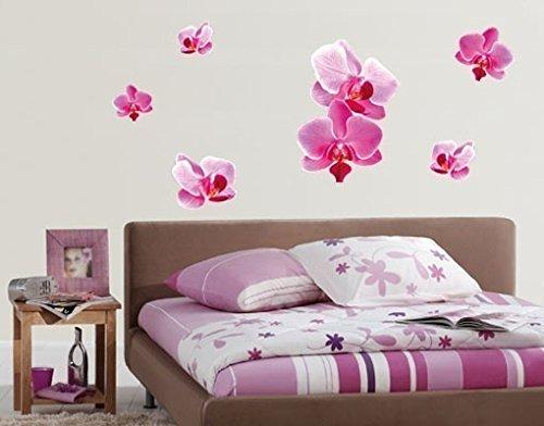 Klebefieber Wandsticker Rosa Orchideen B x H: 50cm x 37cm