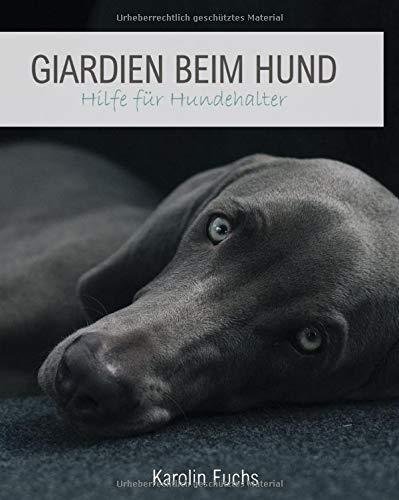 GIARDIEN BEIM HUND: Hilfe für Hundehalter