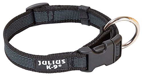 JULIUS-K9 220CG Color & Gray Halsband, 20mm*27-42 cm, verstellbar, schwar-grau