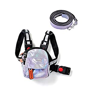 icicecream Dog Backpack Harness with Leash Backpack for Dogs Adjustable Saddle Bag Reflective Strips Night Safe Outdoor Travel Hiking Walking Harness Backpack for Small Medium Large Dogs
