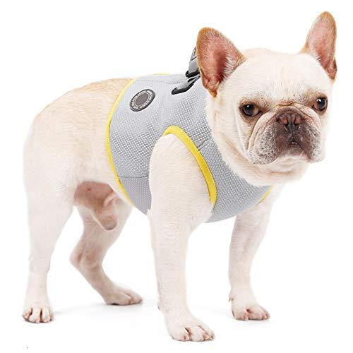 perfecti Kühlweste Für Hunde, Outdoor Hundekühler Harness Sicherheit Atmungsaktive Pet Cooling Coat Ideal Für Kleine Mittelgroße Und Große Hunde