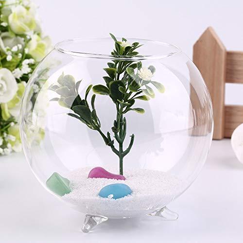 Vase Stativ Unterstützung Runde Form Glas Pflanze Blume Landschaft Vase Container Transparente Hydroponik Vase Aquarium Fishbowl Home Deco