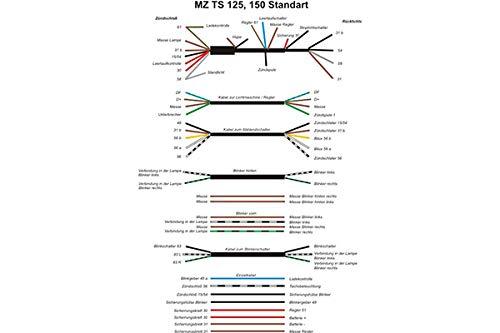 Kabelbaum für MZ TS 125, 150, ETS 125, 150 - De Luxe mit Drehzahlmesser