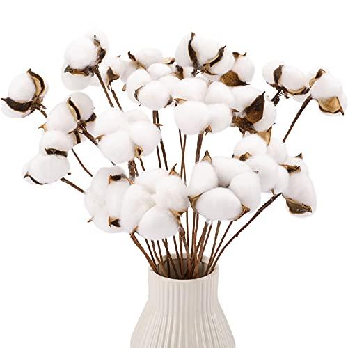 CEWOR 20pcs Cotton Stems, Fake Cotton Flowers Dried Cotton Picks Stalks Plants,...