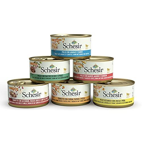 Schesir Salads Pokè,Comida Húmeda para Gatos Adultos, Varios Sabores, Filetes En Salsa - Total 2,04 Kg (24 Latas X 85 Gr) 🔥